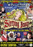 2005 - Sleeping Beauty Displays a larger version of this image in a new browser window